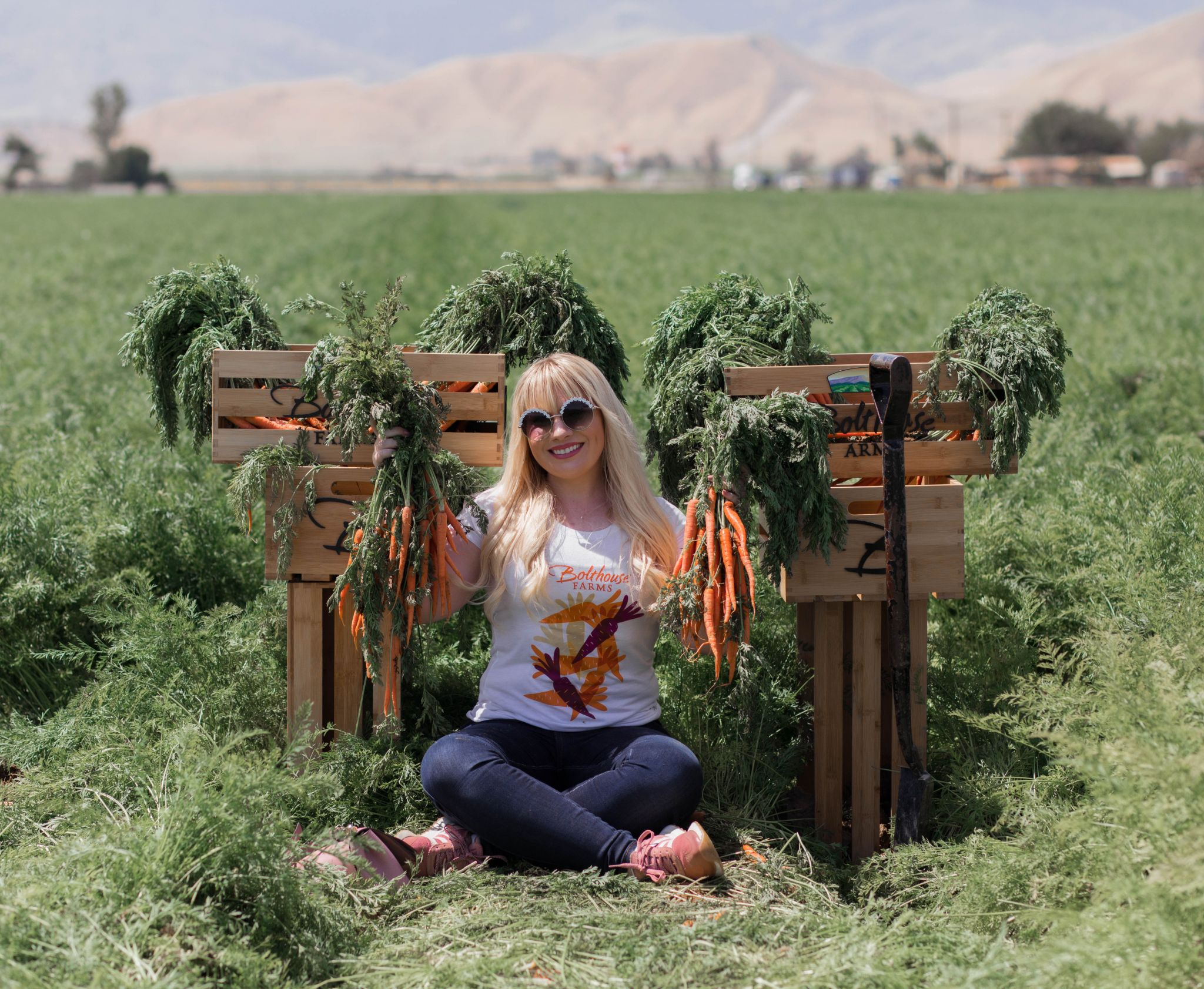 Elizabeth Hugen of Lizzie in Lace takes us along for a visit to Bolthouse Farms to see they make carrot juice!