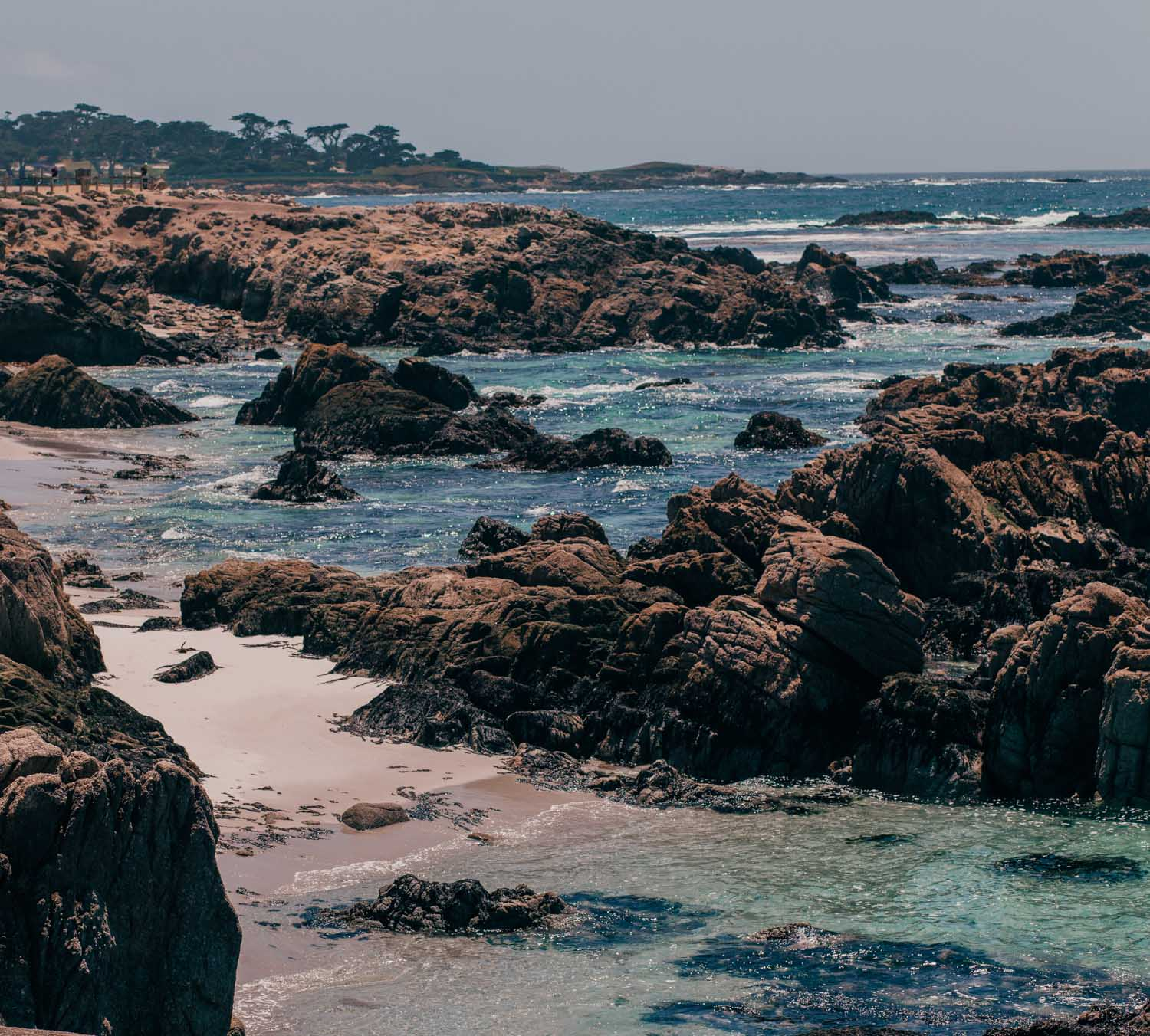Fashion Blogger Elizabeth Hugen of Lizzie in Lace shares what to do in Carmel by-the-sea including exploring Pebble Beach 17 Mile Drive